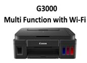 G3000